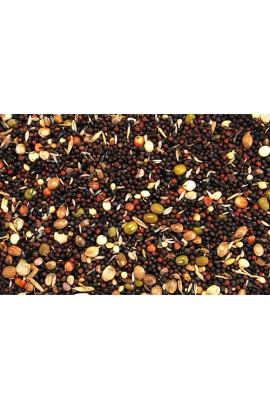 4210G Foto: 4208 semillas germinas versele
