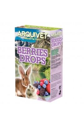 06201 Foto: drops frutas del bosque