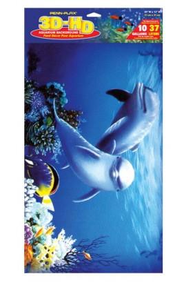 23711 Foto: 23711 poster delfines