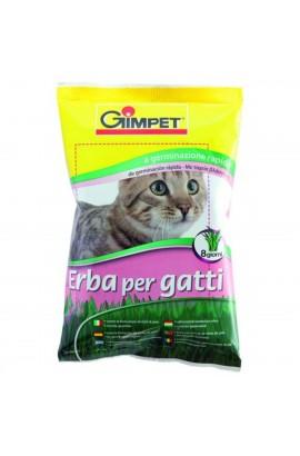 68668 Foto: hierba gatos gimpet