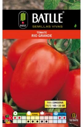 015912BOLS Foto: tomate rio grande