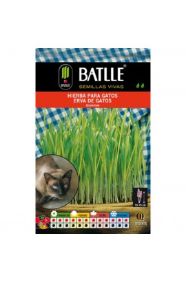 3381 Foto: hierba para gatos batlle