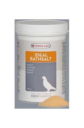 460119 Foto: ideal bathsalt 1 kg