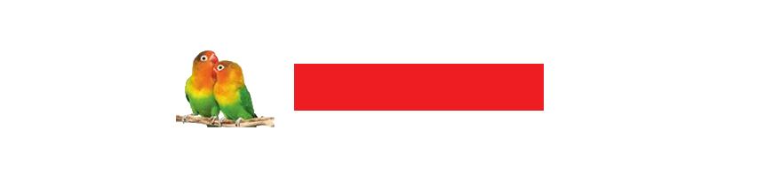 LAFI-PAX PHARMA